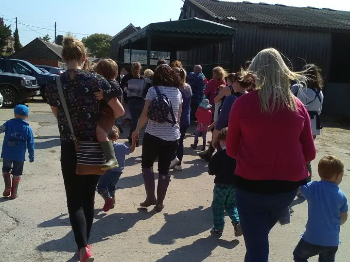 Our visit to Summerleaze Farm and Climb Aboard